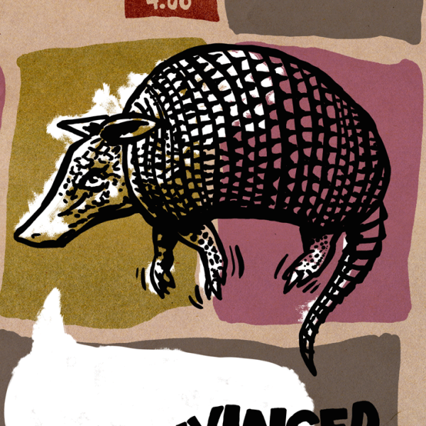 Armadillo-Paul-Tunis-Poetry-Comics